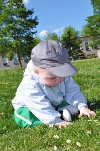 Gras ontdekken